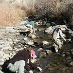 Multi-disciplinary program at US colleges and universities